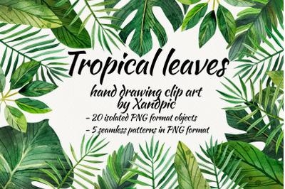 watercolor tropical leaves ,clip art. Digital drawing Tropical leaves