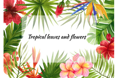 watercolor tropical leaves and flowers ,clip art. Digital drawing Trop