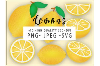 Lemons and Citrus HQ Clipart, High Details Lemon Illustrations