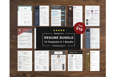 Job Seeker's Resume Bundle
