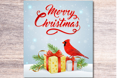 Christmas Gift and Cardinal Bird