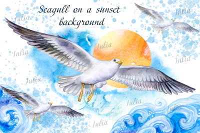 Seagull on the fly. Watercolor