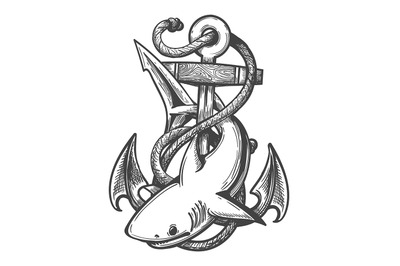 Emblem of Shark and Anchor in Ropes drawn in Tattoo Style. Vector illu