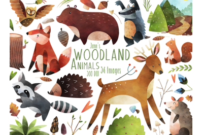 Watercolor Woodland Animal Clipart
