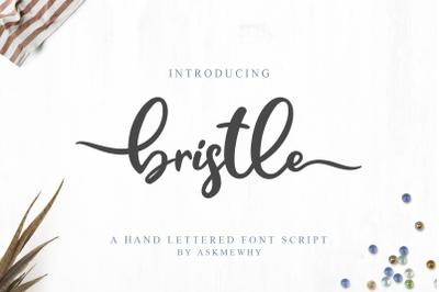 Bristle Font Script
