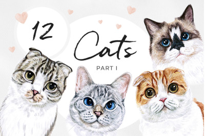 PART 1. Watercolor cat illustrations. Cute 12 cats. Kitty. Meow
