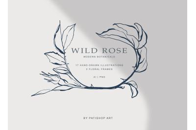 Modern Fine Art Hand Drawn Rose