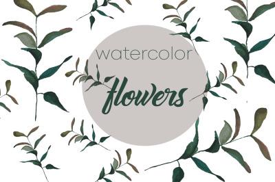watercolor botanical illustration green leaf