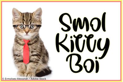 Smol Kitty Boi