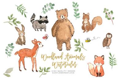 Nursery woodland watercolor clip art, Bear clipart, Owl clip art