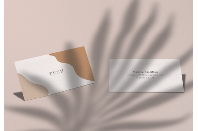 TUSH - Business Cards Mockup Set