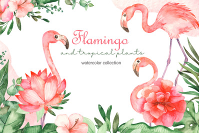 Flamingo and tropical plants watercolor collection