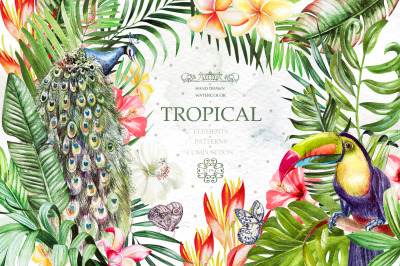 Hand Drawn Watercolor Tropic 4