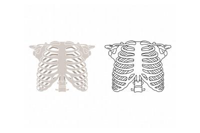 human rib cage, ribs, skeleton svg, dxf, png, eps, cricut, silhouette