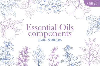 Essential Oils components