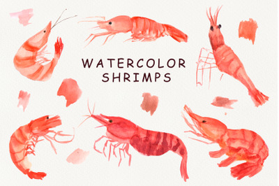 Watercolor Shrimps clipart