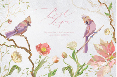 Bird Life | Patterns and creative elements