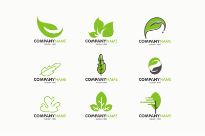 Eco Green Leaf Logo Template. Eps 10