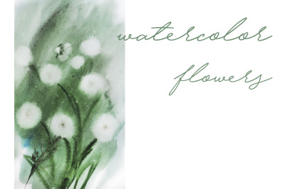 watercolor botanical illustration watercolor flowers