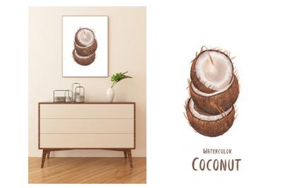 Watercolor Coconutillustration