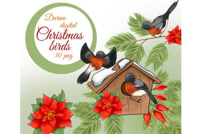 Christmas bird clipart