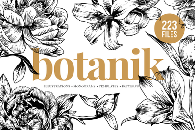 Botanical Illustration Bundle