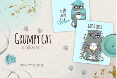 Grumpy cats vector collection