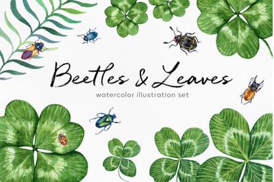 Beetles & Leaves. Watercolor set illustrations