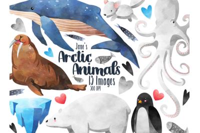 Watercolor Arctic Animals clipart