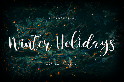 Winter Holidays - Brush Script