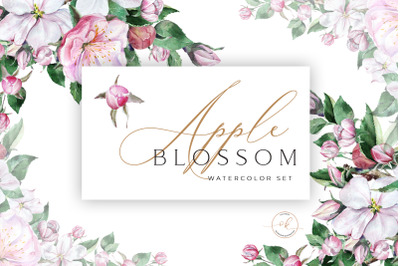Apple Blossom Watercolor Set