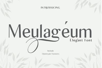 meulageum