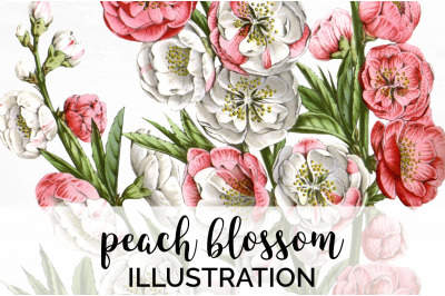 Flowers - Peach Blossom Vintage Clipart Graphics
