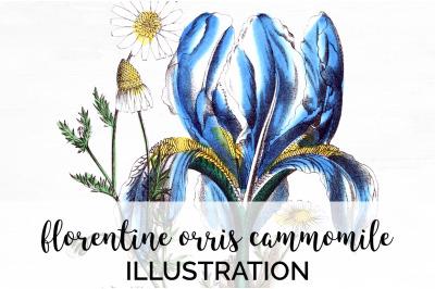 Blue Flowers Clipart
