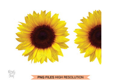Half Sunflower, Whole Sunflower, Sunflower Clipart