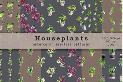Indoor plants. Watercolor seamless patterns
