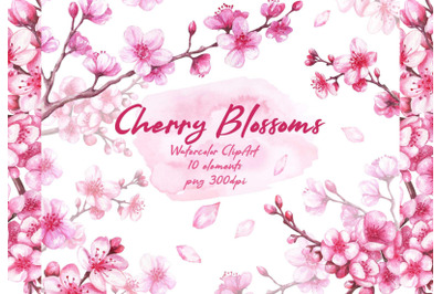 Cherry blossoms Sakura florals Watercolor Clipart Spring pink flowers