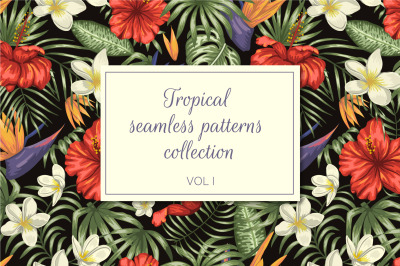 Tropical Patterns Vol I