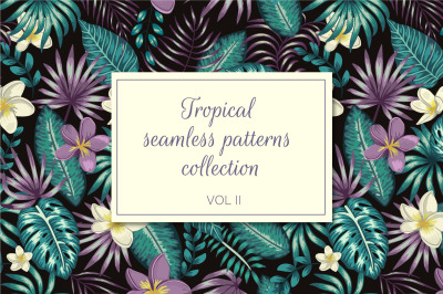 Tropical Patterns Vol II