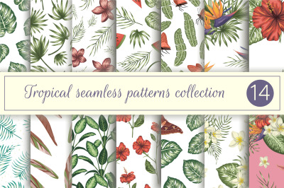 Tropical Patterns Vol III