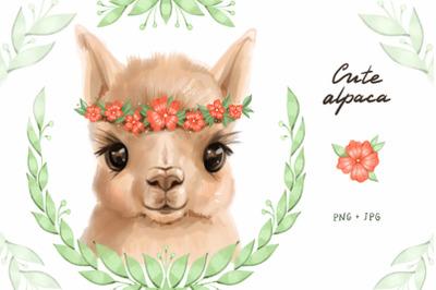 Cute alpaca digital cliparts