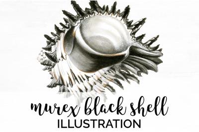 Shell Clipart - Murex Black Shell Vintage