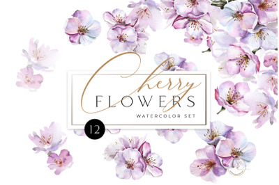 Cherry Blossom Watercolor Set. PNG floral Clipart. Spring flowers