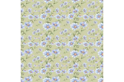 "Watercolor seamless pattern of flowers ""Field daisies""."
