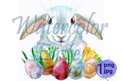 Watercolor illustration of a white rabbit with eggs and grass