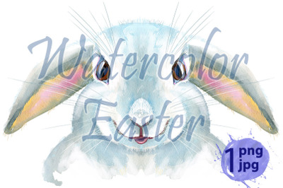 Watercolor illustration of a white rabbit