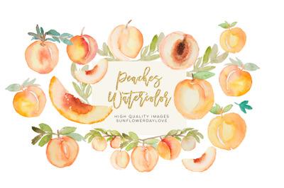 Greenery peaches watercolor clipart, summer peaches clipart