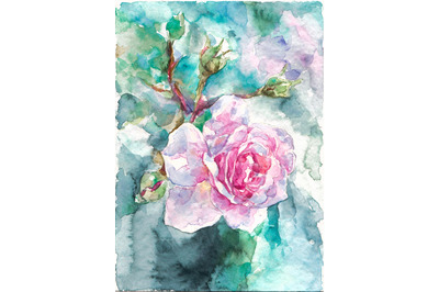 Hand-drawn watercolor pink rose on blue background