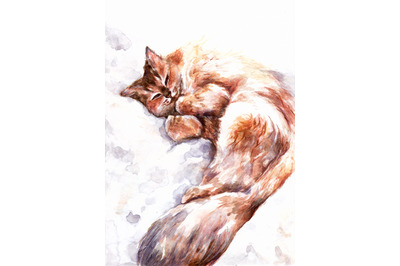 Hand-drawn watercolor and pencil sleeping cat