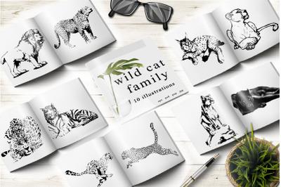 Wild cat family. Vector illustration